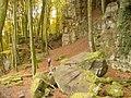 Sandsteinfelsen in der Teufelsschlucht (Sandstone Blocks in Devil's Gorge) - geo.hlipp.de - 14738.jpg