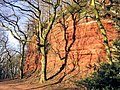 Sandstone Trail Netherton.jpg