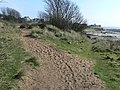 Sandy section of the coastal path - geograph.org.uk - 1144225.jpg