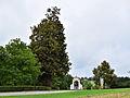 Sankt Agatha - Fadinger-Linde - Sommer-Linde (Tilia platyphyllos) - II.jpg