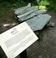 Schellerhau Botanischer Garten Lithophon (01).JPG