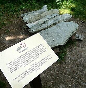Lithophone - Image: Schellerhau Botanischer Garten Lithophon (01)