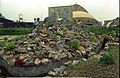 Science Park Under Construction - Science City - Calcutta 1996-07-30 337.JPG