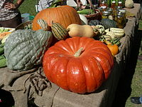 Seattle Tilth Harvest Fair - squash 01.jpg