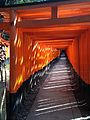 Sembon-Torii in Fushimi Inari Grand Shrine 11.jpg
