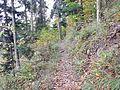 Sentier - panoramio (2).jpg