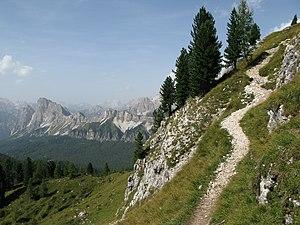 Mount Faloria - Faloria-Path  N°213