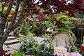 Shanlinxi Medicinal Herbs Garden - panoramio.jpg