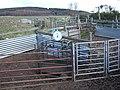 Sheep pens near Heugh-head - geograph.org.uk - 364563.jpg