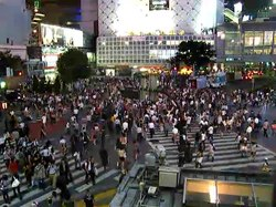 Fil:Shibuya Crossing.ogv