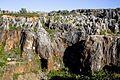 Sierra norte de sevilla-23 (14509065466).jpg