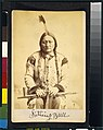 Sitting Bull - photographed & published by Palmquist & Jurgens, St. Paul, Minn. LCCN00652520.jpg