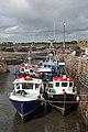 Slade Harbour Fishing Boats II 2018 09 09.jpg