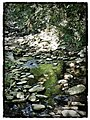 Small river - panoramio (1).jpg