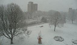 Sneeuw Kruiskamp 's-Hertogenbosch