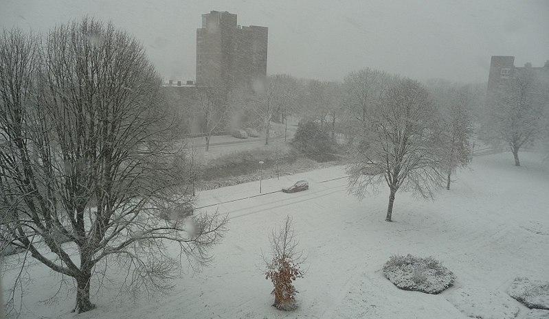 File:Sneeuw Kruiskamp 's-Hertogenbosch.jpg