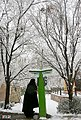 Snowy day of Tehran - 13 January 2007 (16 8510230258 L600).jpg