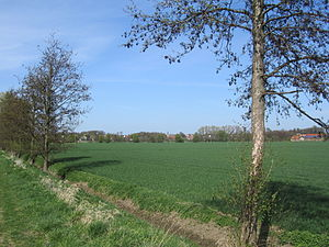 Soest Börde - The Soest Börde between Schwefe and Borgeln