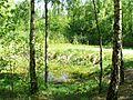 Sosnowiec - Zagórze - panoramio (8).jpg
