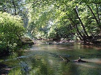 Big Timber Creek - South Branch, just below Blackwood Lake, looking downstream