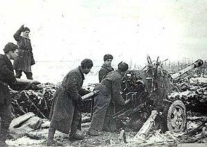 Nikopol–Krivoi Rog Offensive - Soviet artillerymen firing at fortifications during the offensive