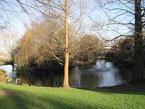 Springfield Park (London) - Lake in Springfield Park
