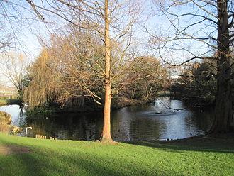 Springfield Park (London) - Lake in Springfield Park