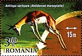 Stamps of Romania, 2015-001.jpg