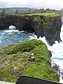 Starr-050406-6170-Schinus terebinthifolius-habitat and picking up Ken-Moku Mana-Maui (24718656326).jpg