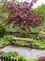 Stationmaster's garden (7819938336).jpg