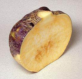 горчичное масло википедия