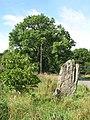Stob Stone (2) - geograph.org.uk - 617343.jpg