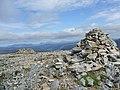 Summit of Meall a' Chrasgaidh - geograph.org.uk - 894421.jpg