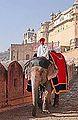 Sur la route du fort d'Amber (Rajasthan) (8490839884).jpg