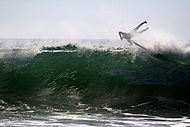 Photo of surfer catapulted into the air with feet higher than head at 45 degree angle to surface