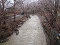 Swollen Mimico Creek.jpg