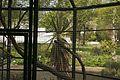 TU Delft Botanical Gardens 27.jpg