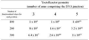 DNA-encoded chemical library - Table 1.  YoctoReactor library size. yR library size is a function of the number of different functionalized oligos used in each position and the number of positions in the DNA junction
