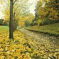 Taul Park (1980). (24809852364).jpg
