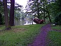 Teplice, zámecká zahrada, Dolní rybník, pařez.jpg