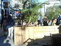 Terrasse, rue Saint-Denis, Montreal - 03a.jpg