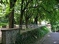 Terrasse auf dem Schlossberg in Freiburg 3.jpg