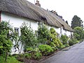Thatched cottage in the hamlet of Ram Alley - geograph.org.uk - 446466.jpg