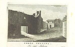 Porta Collina - Porta Collina