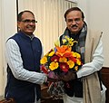 The Chief Minister of Madhya Pradesh, Shri Shivraj Singh Chouhan calls on the Union Minister for Chemicals and Fertilizers, Shri Ananthkumar, in New Delhi on January 14, 2015.jpg