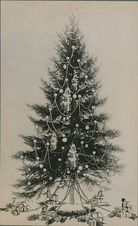 The Christmas tree (HS85-10-32282)