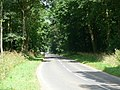 The Drive Past Castle Howard - geograph.org.uk - 211020.jpg