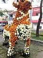 The Flower Llama (17259838986).jpg