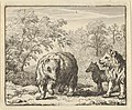 The Lion Frees the Bear and the Wolf from Hendrick van Alcmar's Renard The Fox MET DP837726.jpg