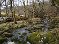 The River Carron - geograph.org.uk - 1770150.jpg